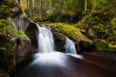 Krai Woog Gumpen (andywon) Tags: trees water forest germany deutschland waterfall rocks wasserfall basin schwarzwald blackforest hotzenwald badenwrttemberg explored gletschermhle kraiwooggumpen blackforestwaterfalls glaciermill gettyimagesgermanyq1