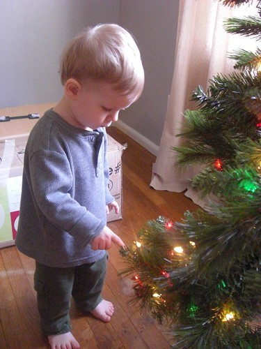 Ben inspecting the tree by you.