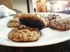 Oatmeal Raisin Cookie - 02