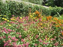 Italian Renaissance Garden 7