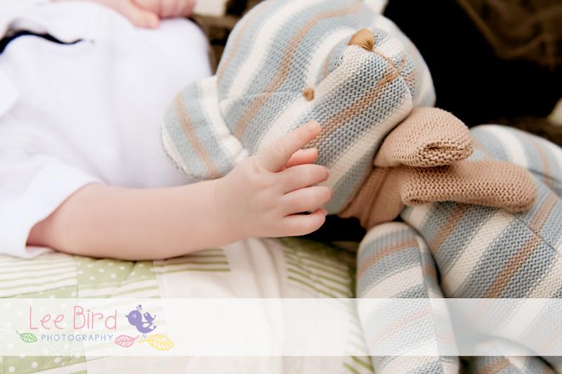 www.leebirdphotography.com.au