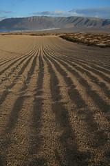 Jable y Acantilado de Famara Dic09 LZ (lanzarote rural) Tags: españa naturaleza nature rural island spain natural lanzarote canarias arena canary acantilado famara agricultura agrícola jable juancazorla cazorlagodoy