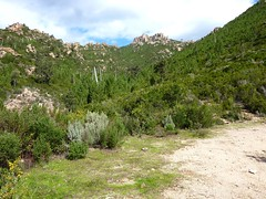 A l'extrémité de la piste de Radichella, départ de la nouvelle sente vers l'aiguille 726 m