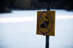 Crisp | WPW 01 (Conny Lundgren) Tags: winter snow cold skne vinter frost sweden schweden sverige malm sn sucia malmo suecia scania resund 70200mm sude resund svezia ruotsi 70200l isve kallt canonef70200mmf28lisusm  canoneos5dmarkii canon5dmark2 5dmk2 canon5dmarkii canoneos5dmk2 52photowalks 525of2010 photowalk12010 wpw1