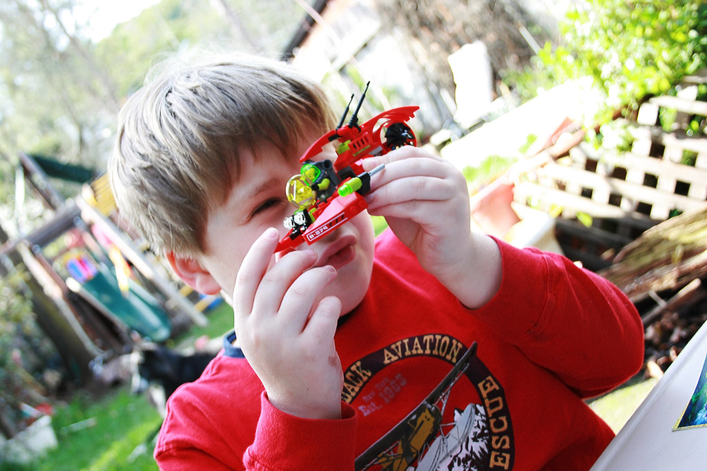 Building a Lego Set in the Backyard