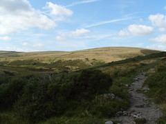 S1051817 (AppleJays) Tags: england nationalpark hills devon fields moors dartmoor moorland aonb tors