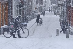 Snow blizzard surprises bikers in Amsterdam (B℮n) Tags: amsterdam egelantiersgracht snow covered bikes bycicles holland netherlands canals winter cold wester church jordaan street anne frank house dutch people scooter gezellig cafés snowy snowfall atmosphere colorful windows walk walking bike cozy westerkerk rondvaartboot boat rembrandt corner water canal weather cool sunset 1000km file celcius trees mokum grachtengordel unesco world heritage sled sleding slee nowandthen meeuw seagulls meeuwen bycicle 1°c sun shadows sneeuw brug kids fun heineken egelantiersdwarsstraat hilletjesbrug blizzard dickens wow 200faves topf200