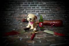Things that hurt. 49/100 (partymonstrrrr) Tags: puppy toy toys bat knife 100 knives bloody dagger poison scamp possibilities
