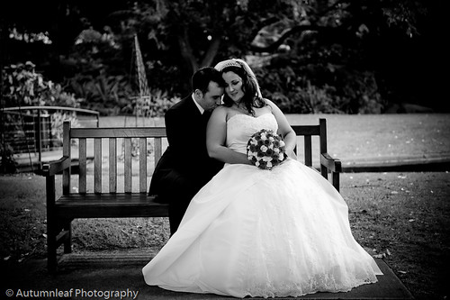 Pamela & Adam's Wedding - Romance on a bench