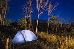 Campsite (David Kingham) Tags: nightphotography blue trees sky green grass stars nikon tent astrophotography wyoming aspen startrails vedauwoo d90 bigagnes