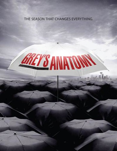 Grey's Anatomy season 6 new updated 3890015712_942f05147c
