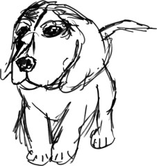 Puppy (aaipodpics) Tags: dogs animals puppy drawing brushpen inkeddrawing