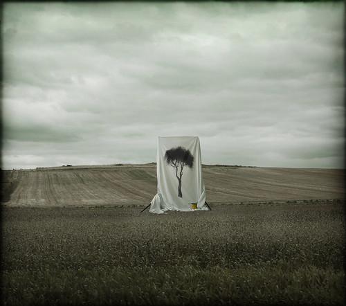 Pinta el futuro. Autora: Cristina Molino