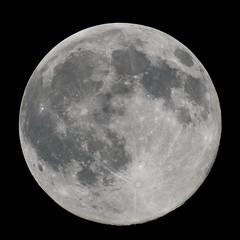 Full Moon (Canon 40D @ 2500mm) (markkilner) Tags: canon eos 40d dslr kent england kilner astronomy moon telescope lunar astrophotography vixen sp102 refractor televue25xpowermate 2500mm broadstairs fullmoon avistack registax photoshop skyatnight skytelescope cloudynights mosaic astro:subject=moon astro:gmt=20091102t1916 southeast thanet