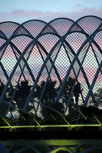 palm-prison
