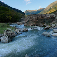 River runs at Parc National des Pyrnes (Bn) Tags: river topf50 stream coldweather southoffrance pyrenees rivercrossing pyrnes mountainpass pirineos pirineus gourette coldriver gabas pirinioak pyrnesatlantiques 50faves idyllicscene parcnationaldespyrnes gavedossau youngfoal lacdefabreges thepyrnesatlantiques 3kmnearbyspainborder gavedubrousset mountainpassportaletdaneu riverstreamgavedebious riverrunsthroughpyrnesatlantiques pyrnesnationalpark horsesinparcnationaldespyrnes riverrunsatparcnationaldespyrnes