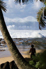 A very large and dangerous wave breaking at Keiki, on the north shore of Oahu, Hawaii. (Sean Davey Photography) Tags: pictures usa seascape color green nature vertical danger spectacular photography hawaii big energy surf power oahu wave alternativeenergy northshore curl swell whitewash spectacle greenenergy greenpower oceanwave seawave alternativepower oceanswell northshoreoahu seandavey keikibeach oceanpower seaswell photographyfineart finephotographyart curlingwave wavesenergy seawaveenergy oceanenergy oceanwavepictures seandaveyphotography 40footwave seandaveyfineart
