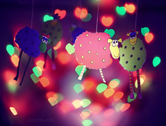 sheepy celebration (Zizox) Tags: sheep iran bokeh celebration   heartshapedbokeh
