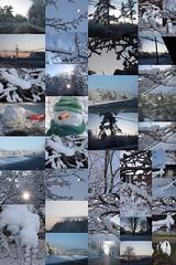 It;s a winter wonderland!!!