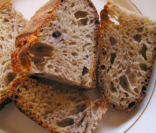 Simple Sourdough Loaf: Crumb & Crust