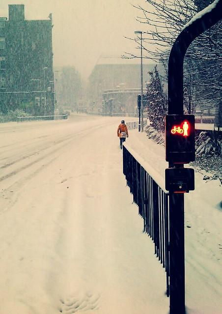College Street Snow 10