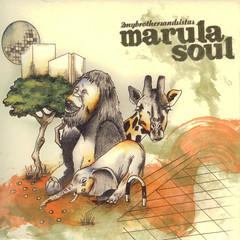 Marula Soul 4 (CD) LMNK27