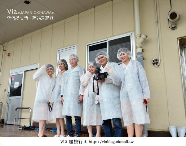【沖繩景點】書上沒教你玩的琉球!via玩琉球《第二天》44