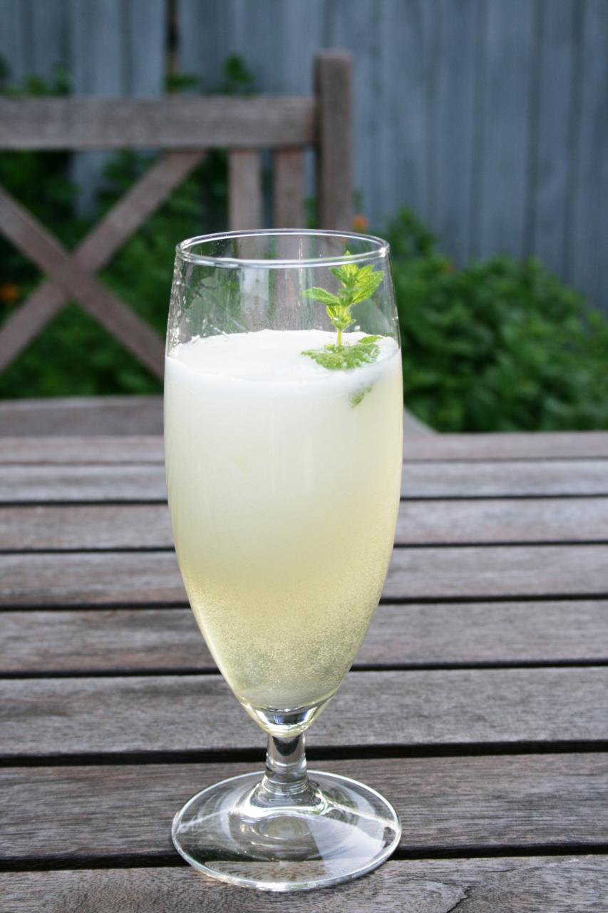 white wine & elderflower spritzer