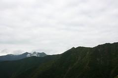 吉田岳への稜線