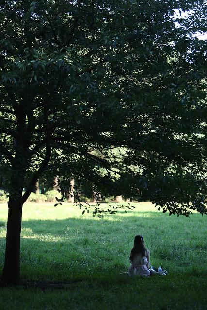 清涼な木陰