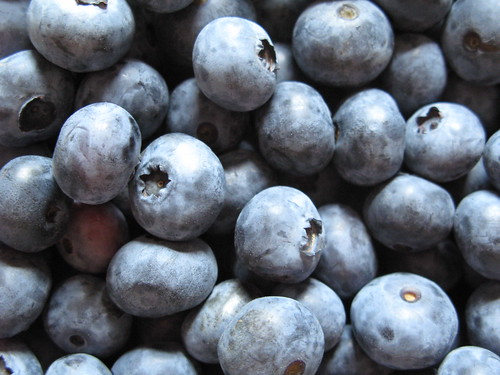 Blueberries!