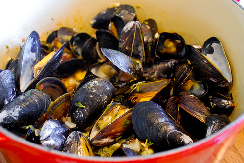 a dinner from france: mussels with white wine