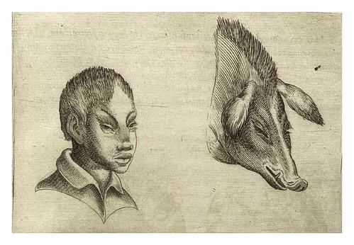 013-De humana physiognomonia- Giambattista della Porta 1586