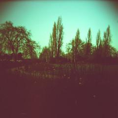 Regent's Park, London (vivoandando) Tags: park inglaterra england london film holga xpro lomography crossprocessed experimental fuji britain united kingdom slide crossprocessing londres filme provia regents 220 processo lomografia fujiprovia100f cruzado rdpiii