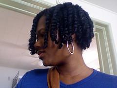 Twists w/ Karen's Body Beautiful (side 1) (Natural Hair Family) Tags: coconutmilk naturalhair twists twostrandtwists shampoobar lavendarvanilla karensbodybeautiful jessicurl janecarter hairmilk chagrinvalley nourishshine deeptreatment weeklydeeptreatment