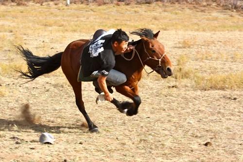 Mongolia - 246