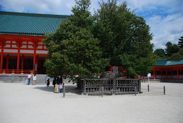 京都-0276
