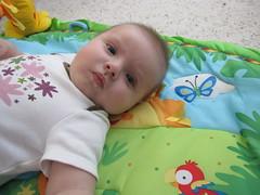 Sept. 27, 2009 (leesepea) Tags: sweetpea