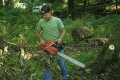 _MG_6415.JPG (zimbablade) Tags: trees sleepyhollow dougmiller videopoem