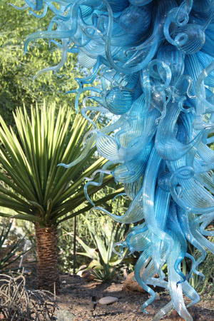 Chihuly0033_PS