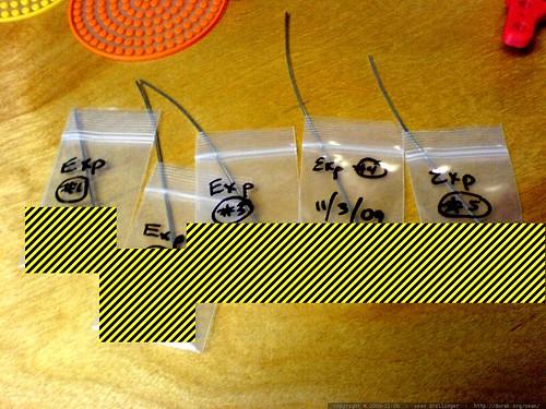 some of rachel's work experiments - DSC03218