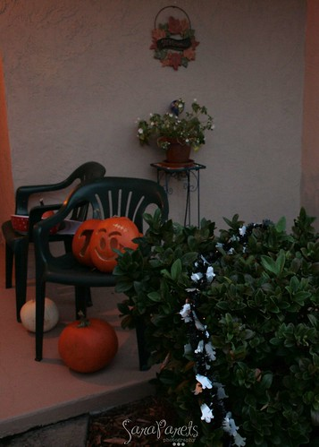 Day after Halloween display