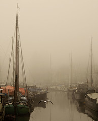 The benefits of fog (Danil) Tags: autumn mist holland netherlands dutch fog cityscape daniel seagull nederland depressed groningen boathouse meeuw mycity d300 grachtengordel noorderhaven woonboot likeapainting bej stadstimmerwerf visserbrug diepenring benefitsoffog darkdaysbeforechristmas tinylittletag