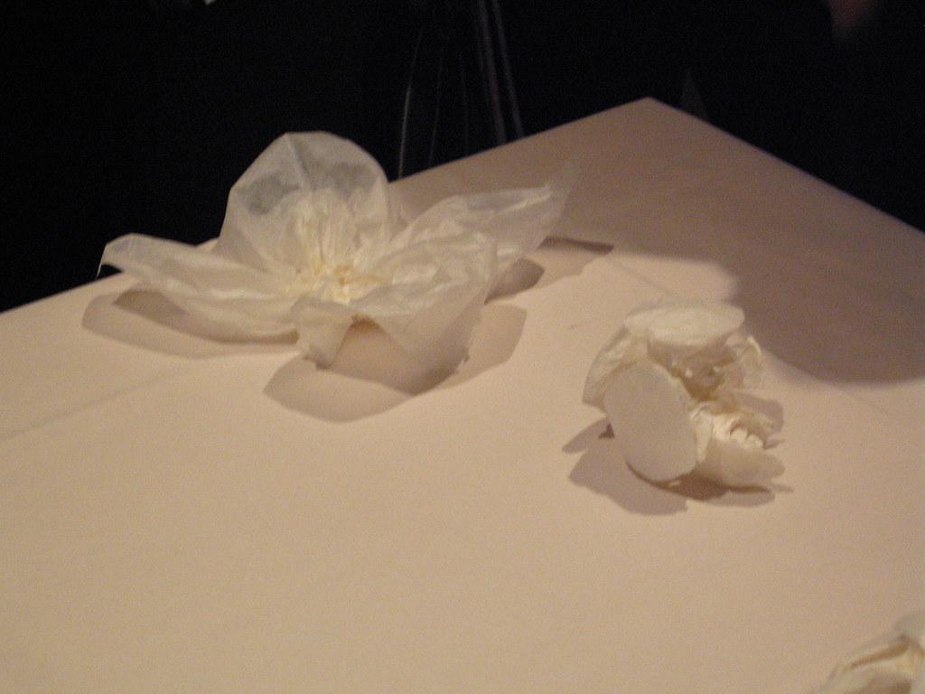 Toilet Seat Cover Origami