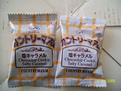 Japan salty chocolate cookies