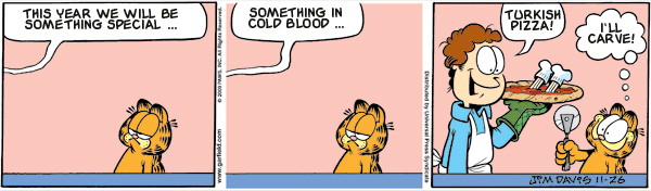 Garfield: Lost in Translation, November 26, 2009