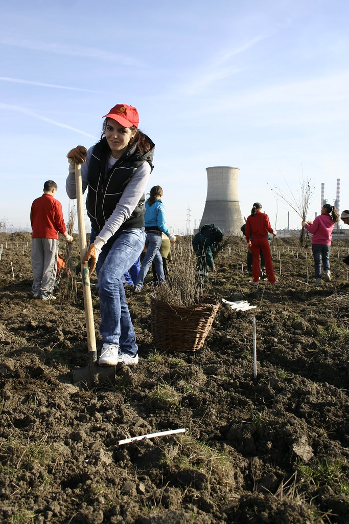 Voluntar pentru Plantagistică 5