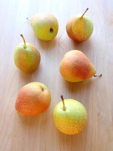 Pear panna cotta