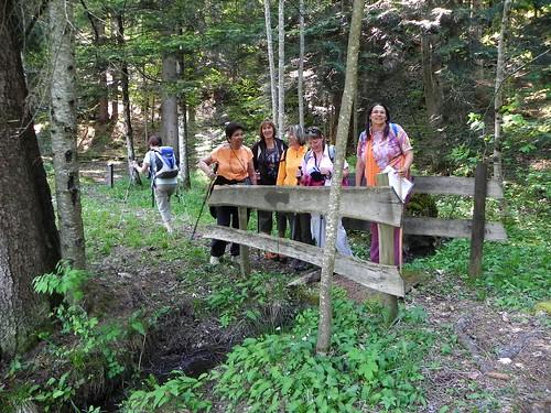 Petit pont en forêt - Sentier Botanique Marthod 017