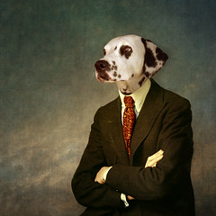 The patient man - l'homme patient (Martine Roch) Tags: portrait dog man art funny character surreal photomontage surrealist homme dalmatien caractère martineroch flypapertextures damaltian